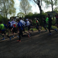Startschuss, 5 km-Lauf